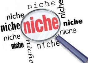 Build Niche Websites